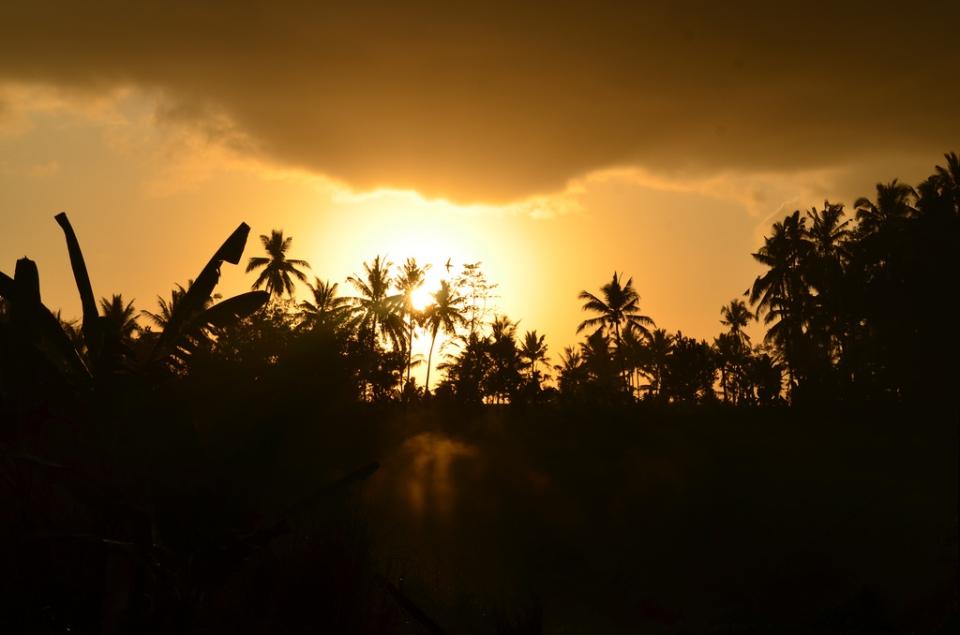 Ubud, Bali at dusk